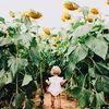 daisyflower94